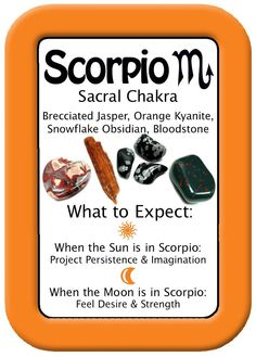 scorpio  - Pinned by The Mystic's Emporium on Etsy Chakra Crystals, Chakra Stones, Crystals And Gemstones, Stones And Crystals, Diy Crystals, Gem Stones, Healing Crystals, Scorpio Love, Scorpio Sign
