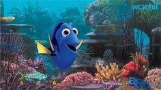 Pixar fans were introduced to Ellen Degeneres' Dory in Finding Nemo , and 13 years after that release, she's leading her own movie, Finding Dory . However, marine biologists have this issue with the upcoming Pixar blockbuster. Disney Pixar, Walt Disney, Disney Marvel, Disney Cinema, Disney Magic, Disney Quiz, Disney Animation, Cinema 21, Animation Movies