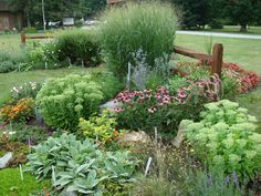 Xeriscape with water-wise plants. Minimize water-thirsty lawn.