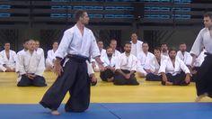 Vassilis Nykteris 5th Dan Aikido Festival Greece 2016 http://www.aikidoacademy.gr