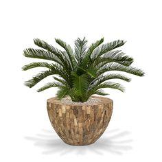 Palmier Cycas Artificiel 80cm en pot Tondo Alto 70cm