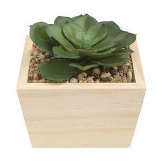Succulent in Wood Base Laundry Decor, Home Entertainment, Succulents, Wood, Plants, Base, Bathroom, Ideas, Washroom