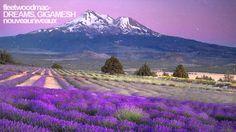 Nice Remix of a GREAT Classic--- Fleetwood Mac- Dreams (Gigamesh Remix)