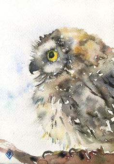 Saw-whet owl - 5x7 Original watercolor painting - small painting, little bird, baby animal, nature art, nursery, cute, Japanese inspired