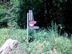 W lesie między miejscowościami Leszczewek i Krzywe (droga na trasie Suwałki-Sejny).