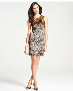 51260544bdb4 Ann Taylor Exotic Lace Print Sheath Dress