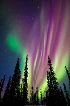 Northern lights More