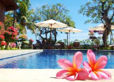 Frangipani beach hotel in bali. This place is soooo amazing