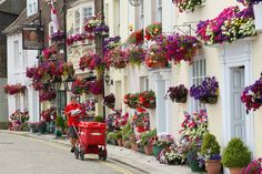South & South East in Bloom Places In England, Isle Of Wight, Hanging Baskets, Surrey, Hampshire, Schools, Britain, Cities, Floral Wreath