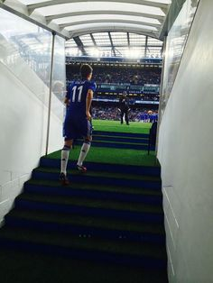 Oscar out of tunnel at the Bridge