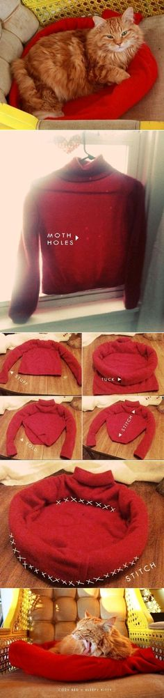 DIY Kitty Cozy Sweater Bed