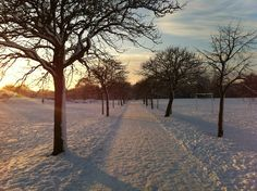 Winter sunset, Eaton Park.