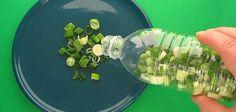 Yeşil Soğanı Evinizde Aylarca Taze Saklayabilirsiniz!