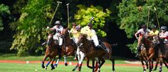 Spectators visit the Austrian Polo Open to witness the breakneck game and get a… Pony, September, Horses, Game, Animals, Pony Horse, Animais, Animales, Venison