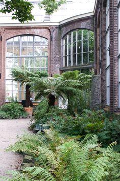 Cool Lost in Plantation botanical gardens Hortus Botanicus Amsterdam plants Urban Jungles