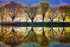 Spring reflection by Jaewoon U
