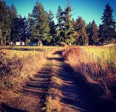 Beavercreek Oregon Homestead