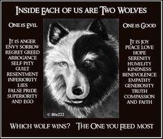 2wolves.jpg