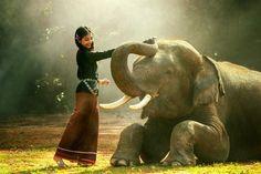 Житейски мъдрости за трудностите, за търпението, за егото, за празните приказки…