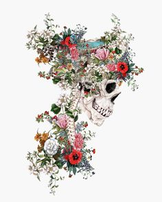 Skull Queen Canvas Artwork by Riza Peker, . Skull Queen Canvas Artwork by Riza Peker, Art Sketches, Art Drawings, Pencil Drawings, Arte Com Grey's Anatomy, Skeleton Art, Ouvrages D'art, Skull Wallpaper, Medical Art, Art Moderne