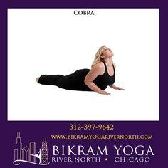 Bikram's Cobra Pose #BikramYogaRiverNorth #BikramYoga #YogaPoses #BikramYoga26Postures #CobraPose Bikram Yoga Poses, Cobra Pose, Body Parts, Parts Of The Body