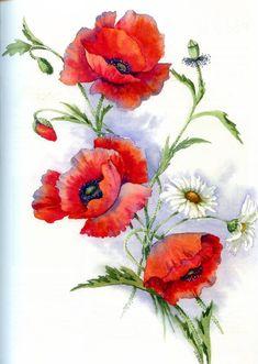 Иллюстрация 21 из 23 для Рисуем по схемам. Цветы. Акварель - Венди Тэйт | Лабиринт - книги. Источник: Росинка