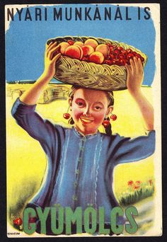 Vintage HUNGARY MAGYAR old advertising postcard with fruits peach cherry Vintage Labels, Vintage Ads, Vintage Images, Vintage Travel Posters, Retro Posters, Travel Ads, Old Ads, Advertising Poster, Illustrations And Posters