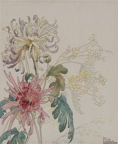View Fleurs 5 works by Henri Privat-Livemont on artnet. Browse upcoming and past auction lots by Henri Privat-Livemont. Illustration Botanique, Art Et Illustration, Floral Illustrations, Botanical Illustration, Art Floral, Floral Artwork, Botanical Drawings, Botanical Prints, Watercolor Flowers