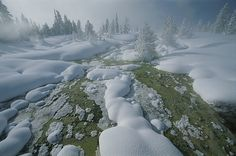 A thick blanket of snow covers West Thumb Geyser Basin in Yellowstone National Park. There are more geysers in this park than anywhere else in the world. Photograph by Norbert Rosing Hd Landscape, Landscape Pictures, Nature Pictures, Snow Pictures, Bob Ross, Mother Pictures, Earth Photos, Nature Hd, Yellowstone National Park