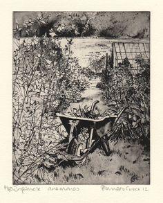 Pamela Grace greenhouses & gardens