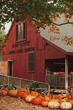 Solve Barden Family Orchard, North Scituate, RI jigsaw puzzle online with 40 pieces Halloween Season, Fall Halloween, Halloween Inspo, Pumpkin Farm, Pumpkin Spice, Autumn Cozy, Autumn Fall, Fall Pictures, Fall Pics