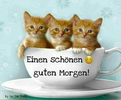 Morgen Gruss Basteln Kinder ❤ katze Easy Cheese Danish - Let the Baking Begin! Morning Words, Good Morning, Three's Company, Happy Day, Rock Crafts, Animals And Pets, Pictures, Cheese Danish, Easy Cheese