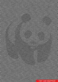 Stare at this Social poster and see the panda disappear | © ILJA KLEMENCOV
