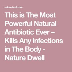 This is The Most Powerful Natural Antibiotic Ever – Kills Any Infections in The Body - Nature Dwell