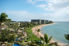 38 Best Sheraton Maui Resort Spa