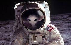 美国销毁月球记录片 俄国公开要真相(多图/视频)