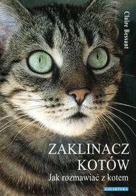 Jak rozmawiać z kotem - Bessant Claire Books, Animals, Libros, Animales, Animaux, Book, Animal, Animais, Book Illustrations