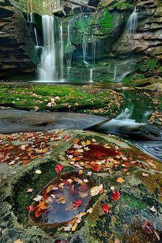 Elakala Autumn blackwaterfalls state park, West Virginia. ... / WOW …