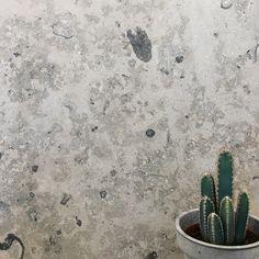 Jura Grey er en kalkstein med naturlig liv og fossiler! Vi har den på lager i fliser og benkeplater 🙂 | limestone | interior | tiles |