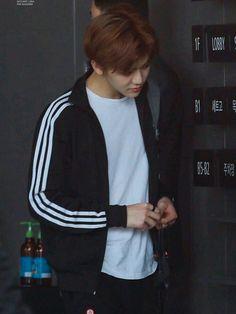 The Main Chapter [cogan ¦ Na Jaemin] Nct U Members, Nct Dream Jaemin, Na Jaemin, Jung Woo, Fandoms, K Idol, Entertainment, Winwin, Boyfriend Material