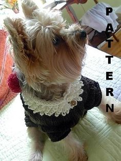 ROOT BEER FLOAT Original Dog Sweater Knitting by mysavannahcottage