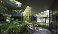 Chang Architects designed the Cornwall Gardens, a tropical multigenerational home in Singapore.