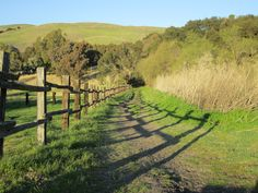 Spring Valley Trail in Ed Levin County Park, Milpitas, CA  I miss this place! My favorite park!