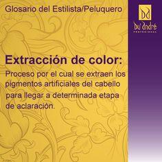 Les presentamos nuestra sección Glosario del Estilista/Peluquero, con pequeñas definiciones para explicarles.