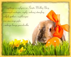 Rabbit, Wallpaper, Holiday, Animals, Decorations, Funny, Style, Tatoo, Easter Activities