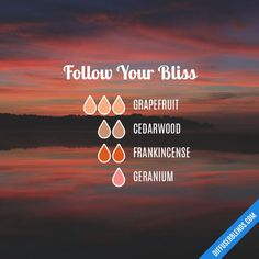 Follow Your Bliss - Essential Oil Diffuser Blend