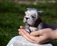 Reserved until January 24 for Charlotte Gower Felt miniature Dog - pinned by pin4etsy.com