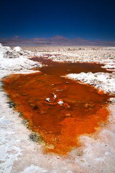 Laguna Chaxa, Atacama Desert, Chile