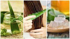 Aloe vera hem besin değeri hem de tıbbi ve kozmetik uygulamalar açısından dünya çapında en tanınmış bitkilerden biridir ve saçlarınızı güçlendirir.