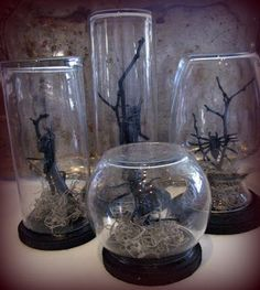 Halloween decor: spo Halloween decor: spooky bug terrariums (spray paint tree branches black & get moss glass containers spiders bugs etc. from Dollar Tree). Easy cheap & Tay can probably help make them. Spooky Halloween, Holidays Halloween, Halloween Crafts, Happy Halloween, Halloween Stuff, Halloween Cloche, Dollar Tree Halloween, Cheap Halloween, Gothic Halloween Decorations